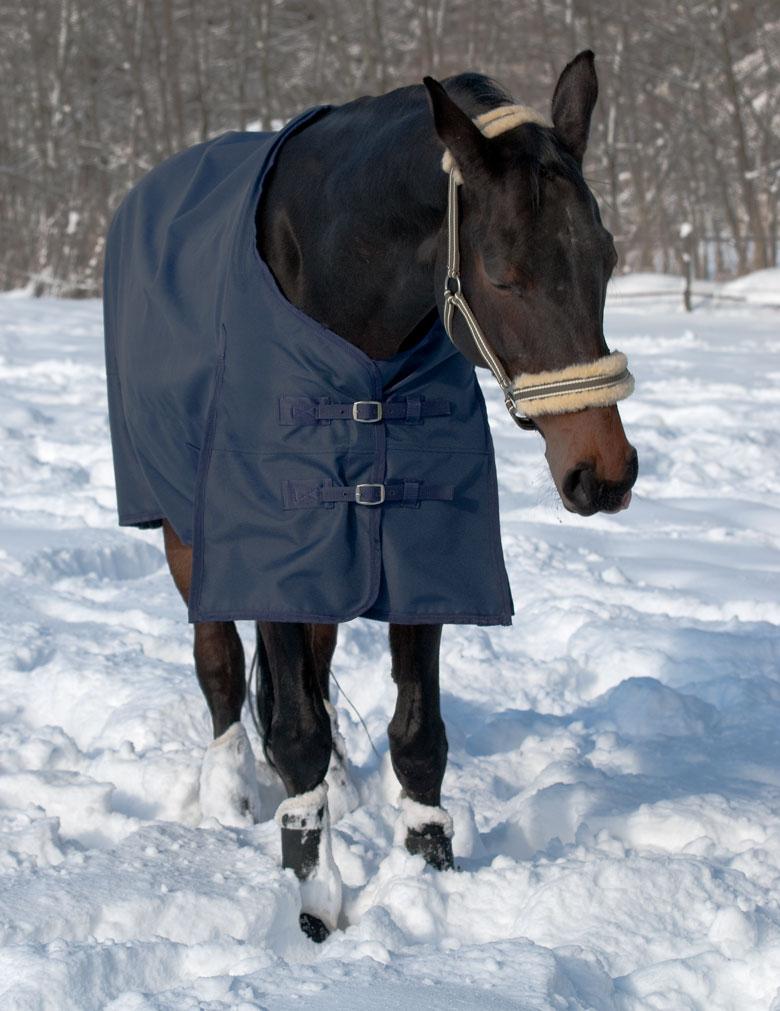 Pferdedecke Brustverschlüsse
