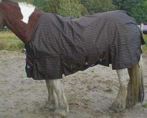 Pferdedecken fuer Westernpferde