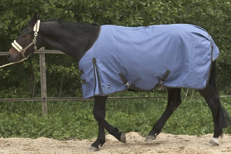 Pferdedecke mit normal neck