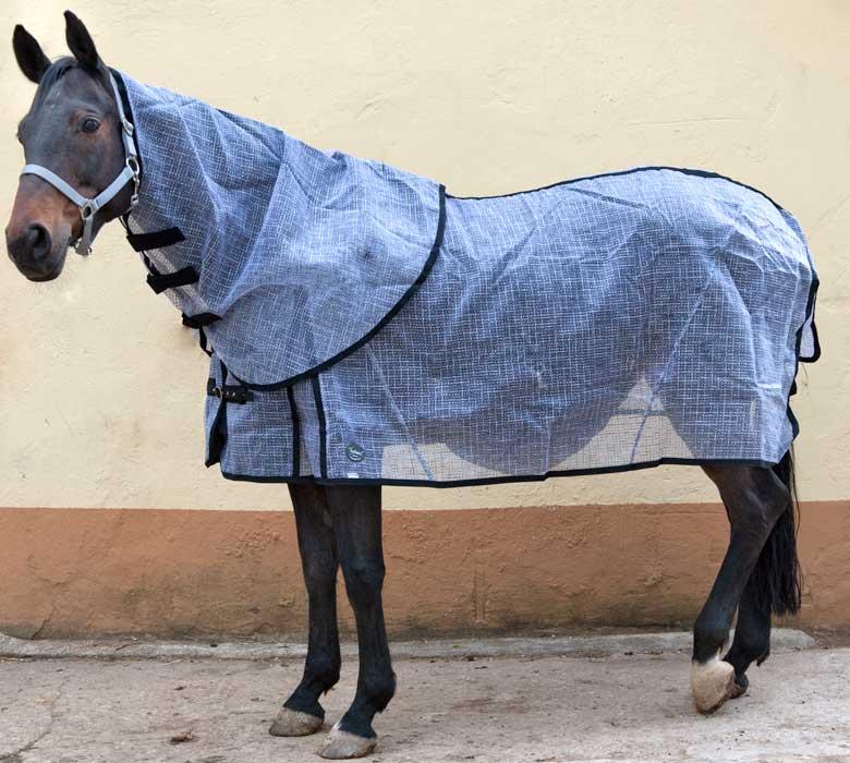 Ekzemerdecke mit normalem Pferdedecken - Schnitt