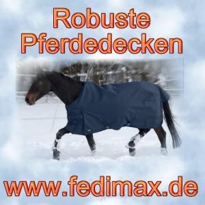 Warme Winterdecke und Regendecke für Deutsches Reitpony