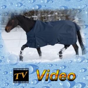 Regendecke mit Abschwitzfunktion für Haflinger