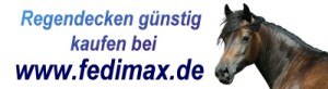 Read more about the article Winterdecke für Warmblut