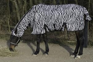 Fliegendecke Zebra senkrecht