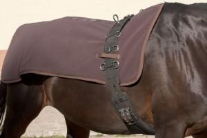 Rückenwärmer für Pferde