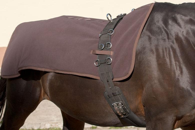 Read more about the article Wärmedecke für ungeschorenes Pferd