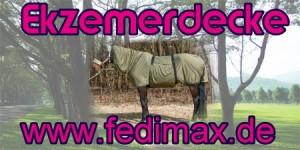 Ekzemerdecke und Fliegenausreitdecke für Quarter Horse