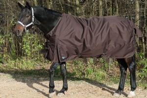 Pferdedecken ohne Scheuerstellen?