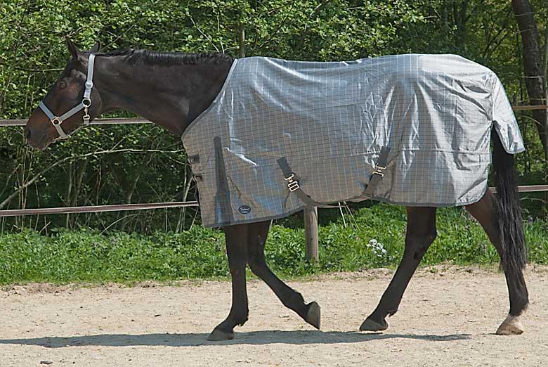 Pferdedecke mit Abschwitzfunktion für Quarterhorse im Offenstall